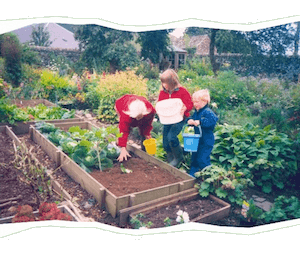 cover of Gardening with Young Children by Beatrys Lockie